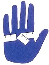 How to Measure your Hand for your Glove Size